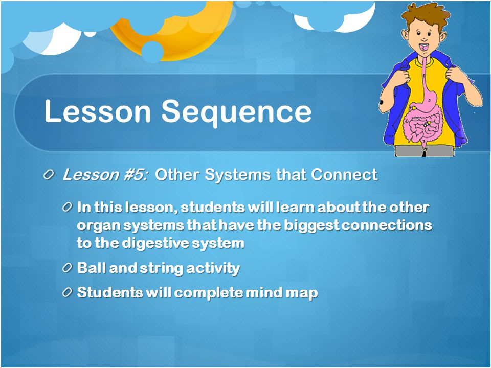 Lesson Sequence Lesson #5: Other Systems that Connect In this lesson, students will learn about the other organ systems that have the biggest connections to the digestive system Ball and string activity Students will complete mind map