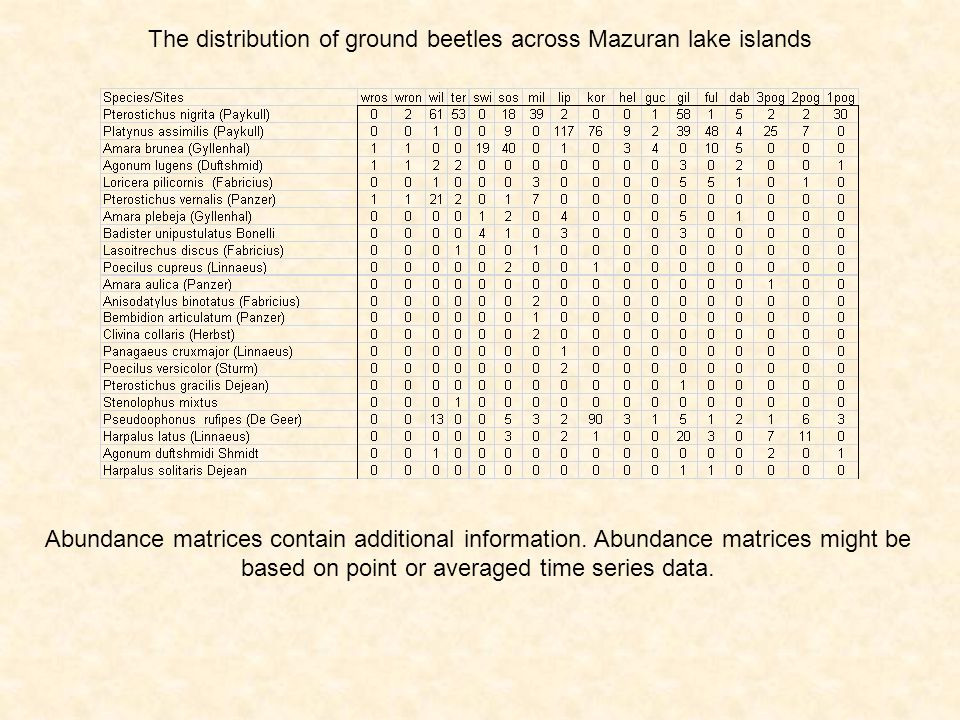 The distribution of ground beetles across Mazuran lake islands Abundance matrices contain additional information. Abundance matrices might be based on