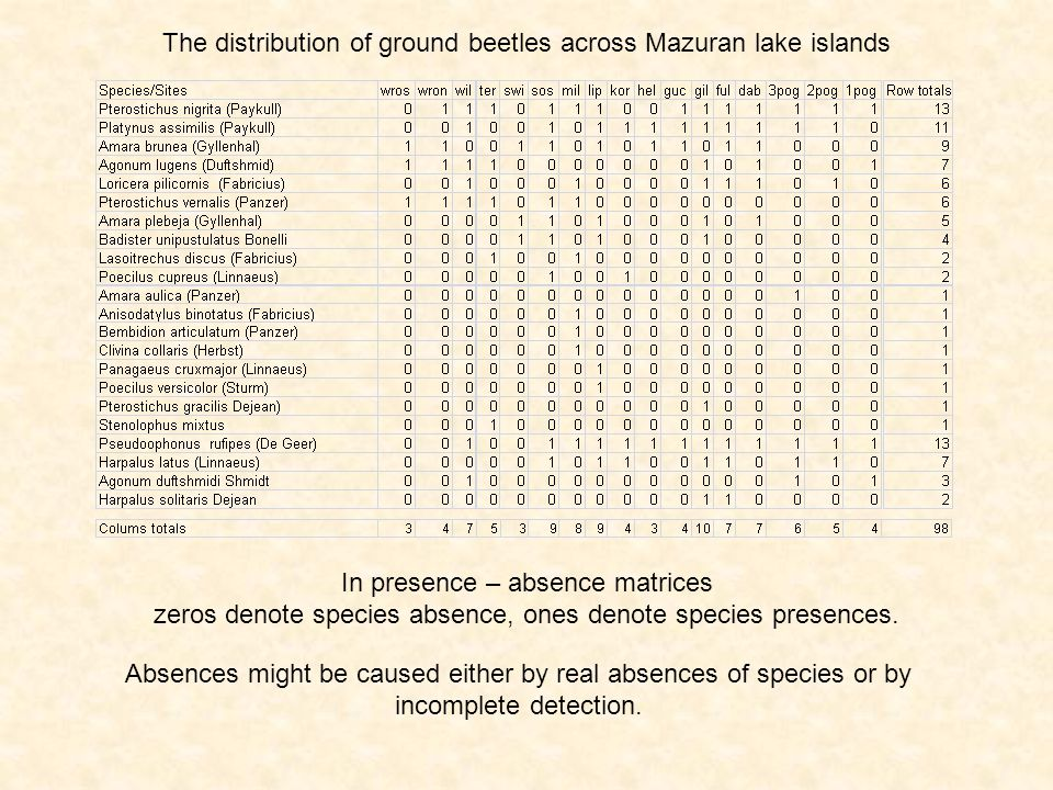 The distribution of ground beetles across Mazuran lake islands In presence – absence matrices zeros denote species absence, ones denote species presen