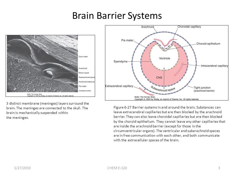 Optimizing Passive Diffusion 5-HT6 program – cognition 57 potent and selective, 18% brain pen.