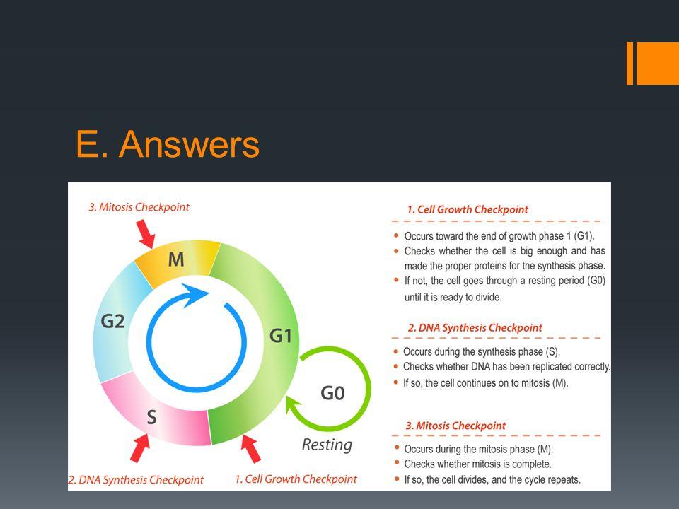 E. Answers