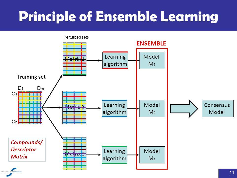 Principle of Ensemble Learning 11 Training set Matrix 1 Matrix 2 Matrix 3 Learning algorithm Model M 1 Learning algorithm Model M 2 Learning algorithm