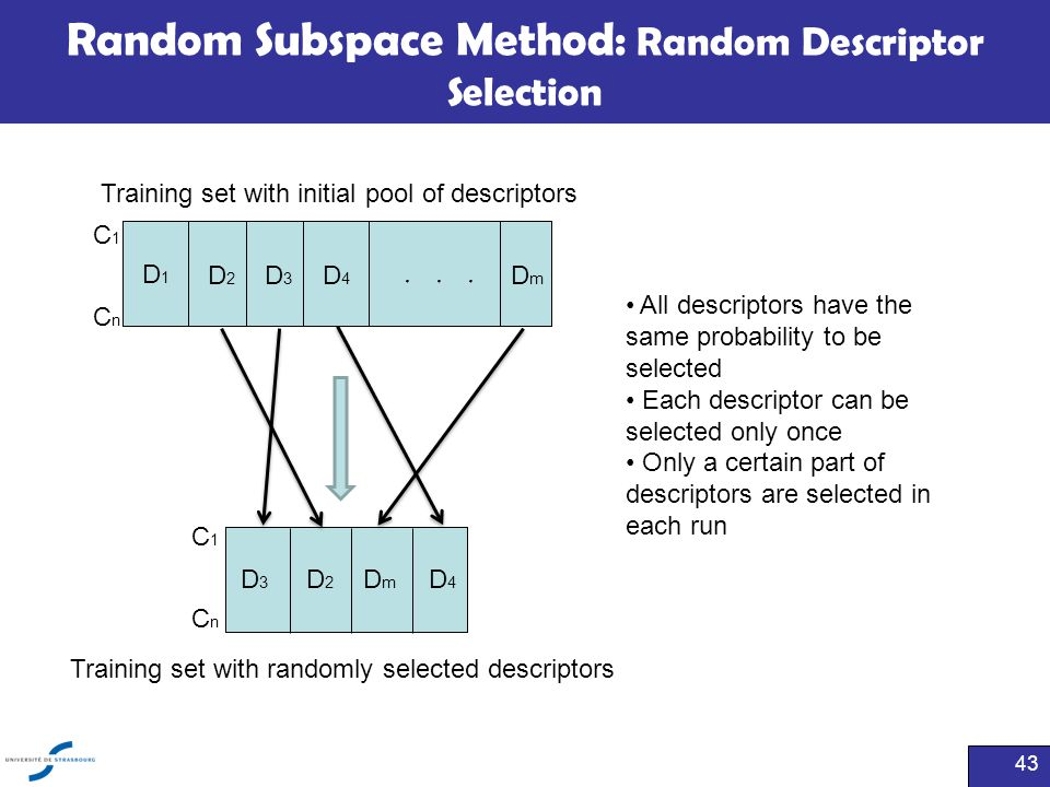 Random Subspace Method: Random Descriptor Selection All descriptors have the same probability to be selected Each descriptor can be selected only once