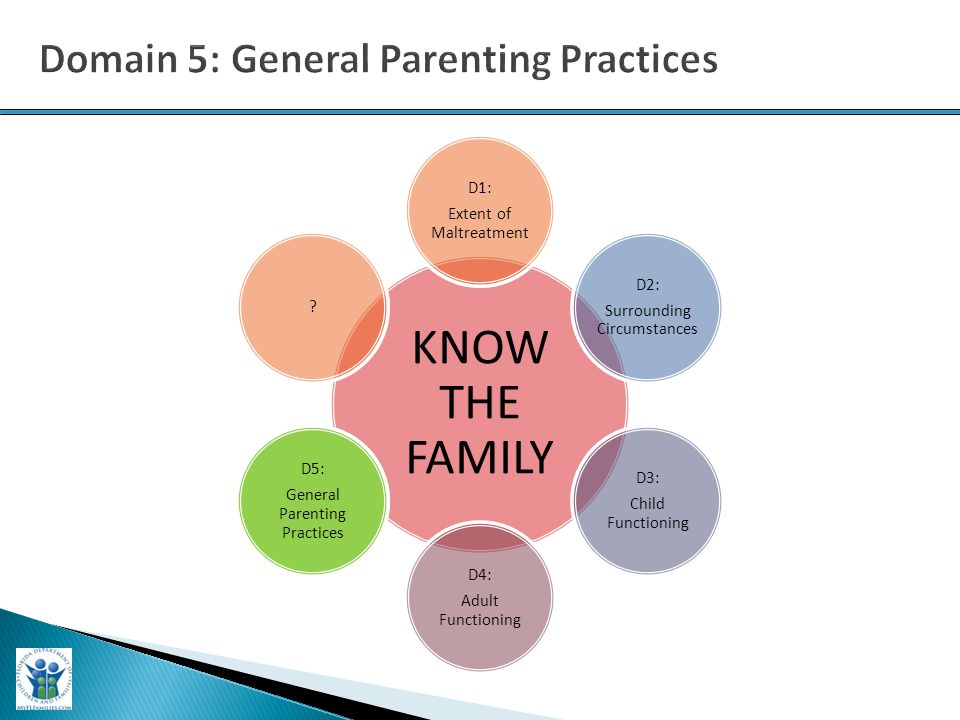 KNOW THE FAMILY D1: Extent of Maltreatment D2: Surrounding Circumstances D3: Child Functioning D4: Adult Functioning D5: General Parenting Practices .