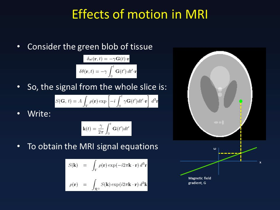Effects of motion in MRI Consider the green blob of tissue So, the signal from the whole slice is: Write: To obtain the MRI signal equations Magnetic field gradient, G x ω