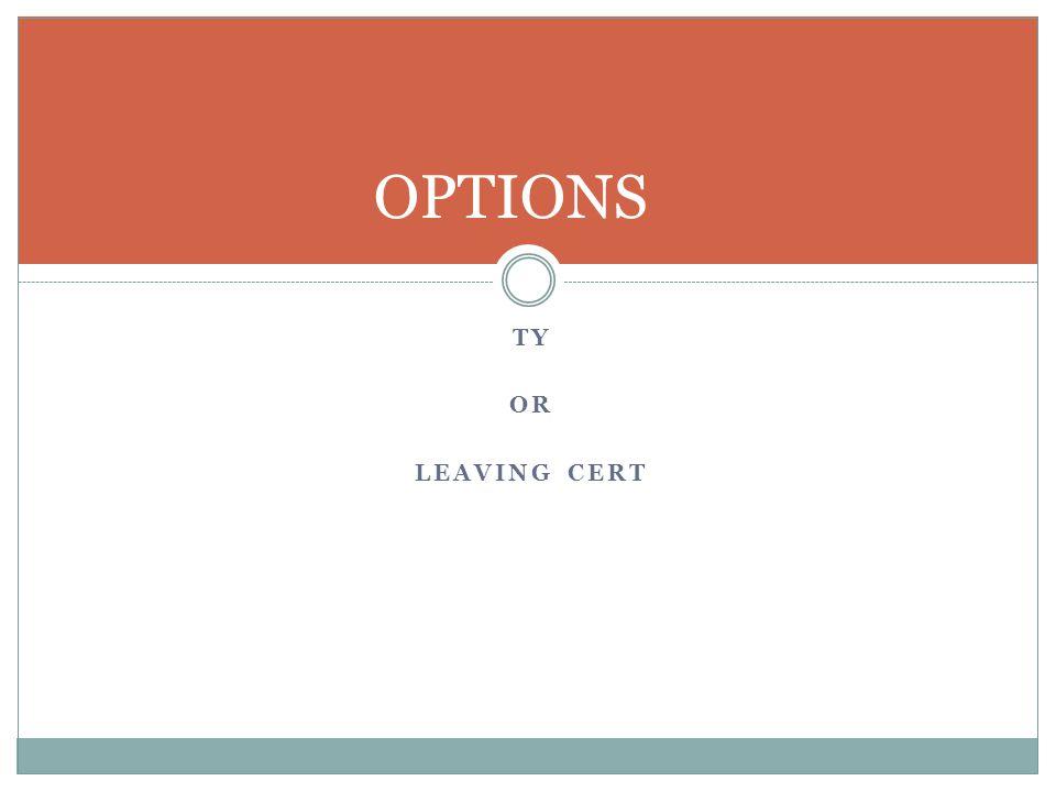 TY OR LEAVING CERT OPTIONS