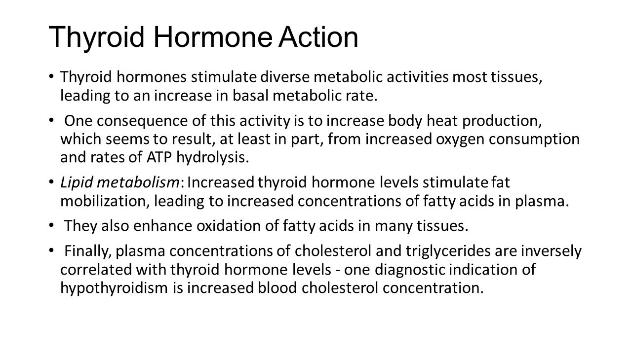 Thyroid Hormone Action Thyroid hormones stimulate diverse metabolic activities most tissues, leading to an increase in basal metabolic rate. One conse