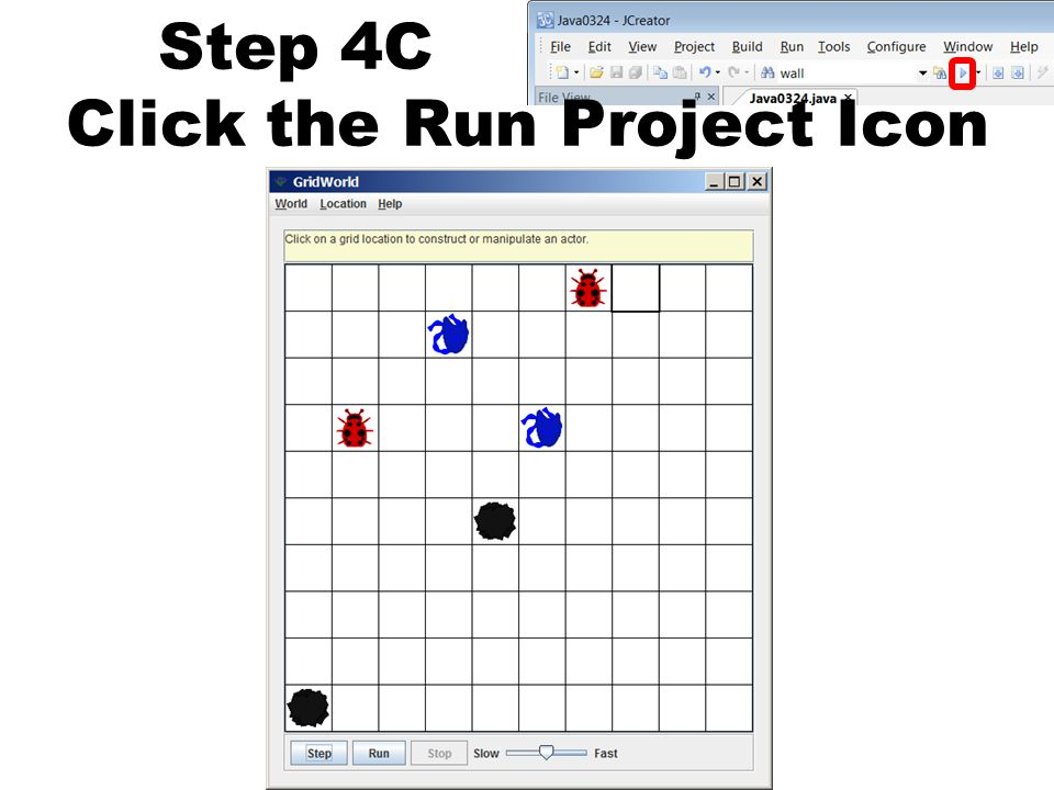 Step 4C Click the Run Project Icon