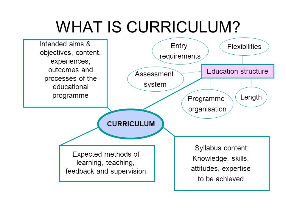 THE EVALUATION SYSTEM PURPOSE CONTEXT METHOD OUTCOME Decision Communicatio n Curriculum change & development