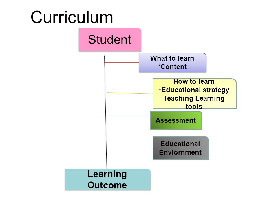 Curriculum development Curriculum planning should be flexible (example of communication skill) Same learning objective could be achieved by using different teaching methodology.