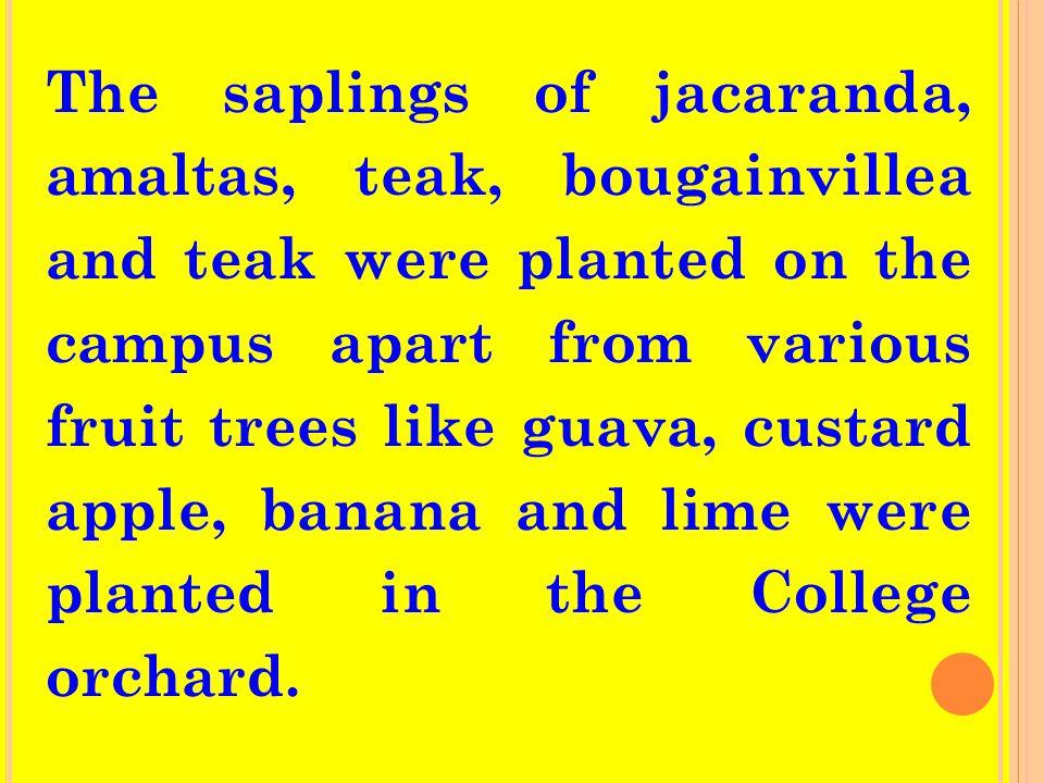 The saplings of jacaranda, amaltas, teak, bougainvillea and teak were planted on the campus apart from various fruit trees like guava, custard apple, banana and lime were planted in the College orchard.
