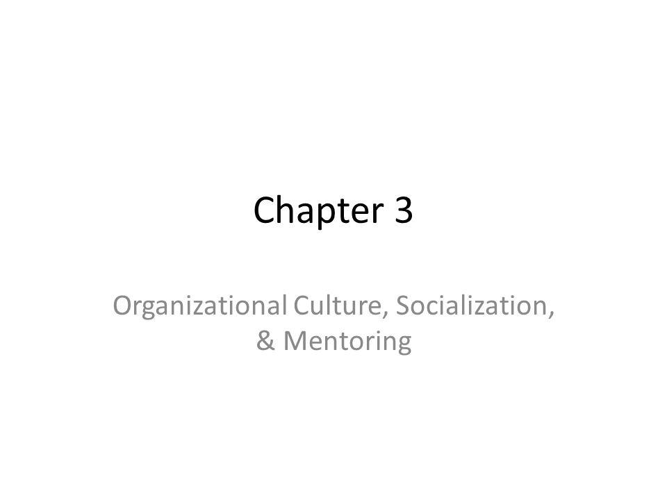 Chapter 3 Organizational Culture, Socialization, & Mentoring