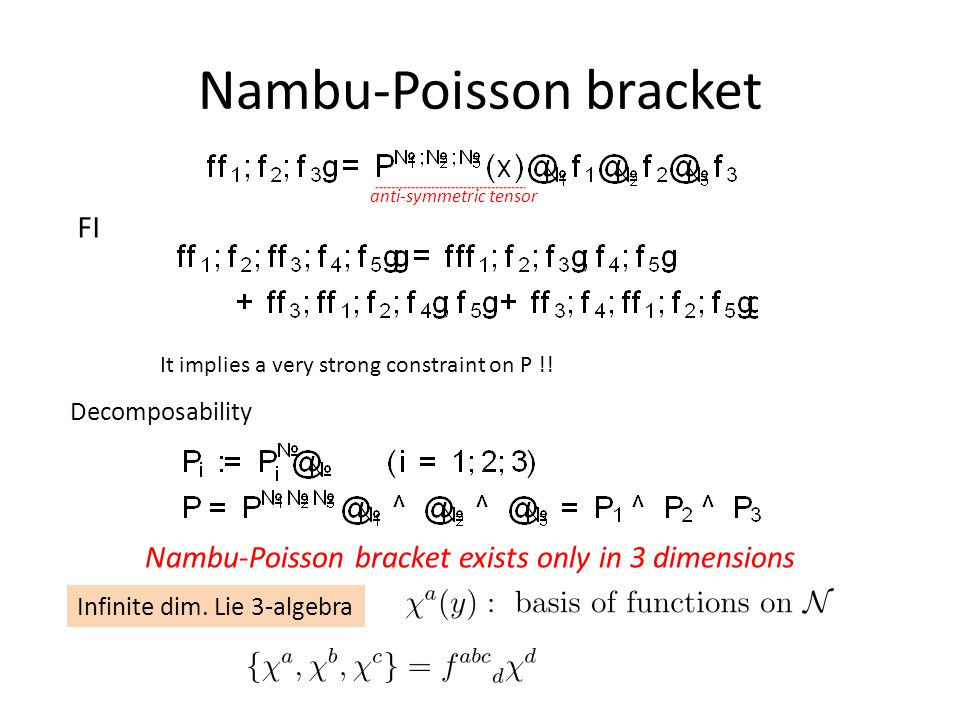 Nambu-Poisson bracket FI anti-symmetric tensor It implies a very strong constraint on P !.