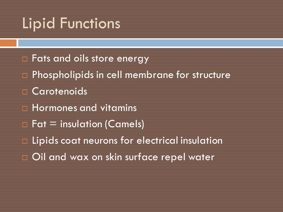 Lipid Functions  Fats and oils store energy  Phospholipids in cell membrane for structure  Carotenoids  Hormones and vitamins  Fat = insulation (