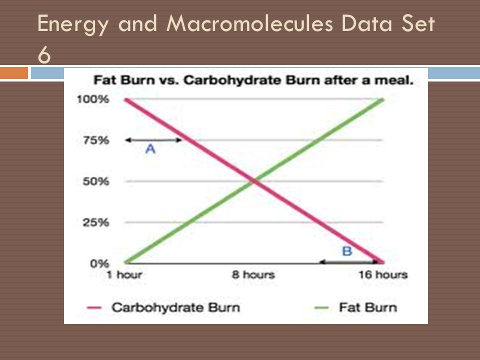 Energy and Macromolecules Data Set 6