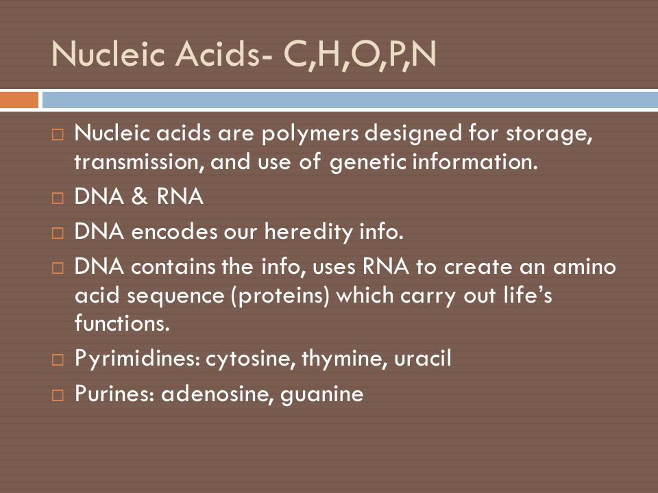 Nucleic Acids- C,H,O,P,N  Nucleic acids are polymers designed for storage, transmission, and use of genetic information.  DNA & RNA  DNA encodes ou