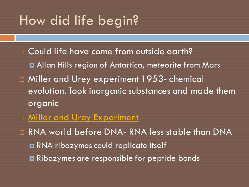 How did life begin?  Could life have come from outside earth?  Allan Hills region of Antartica, meteorite from Mars  Miller and Urey experiment 195