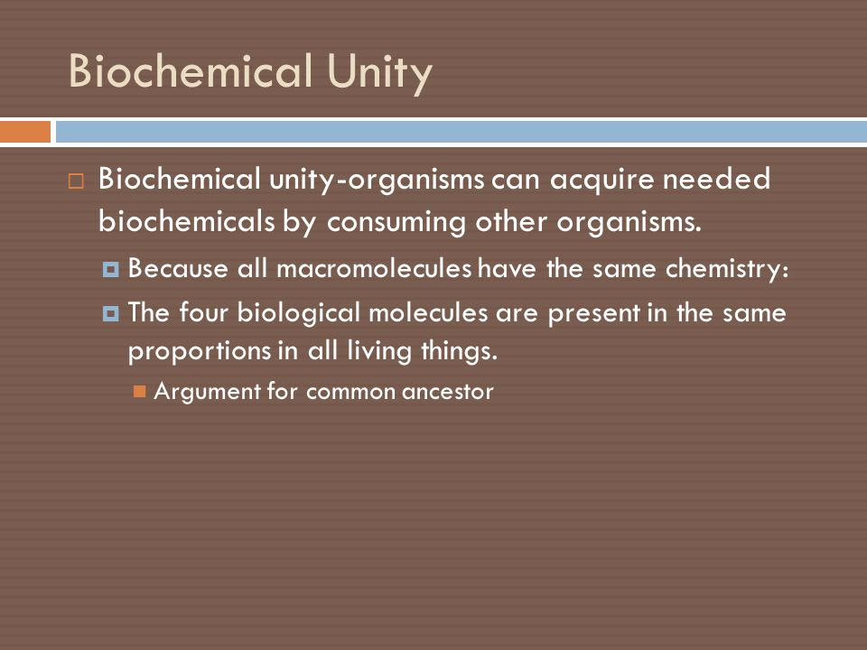 Biochemical Unity  Biochemical unity-organisms can acquire needed biochemicals by consuming other organisms.  Because all macromolecules have the sa