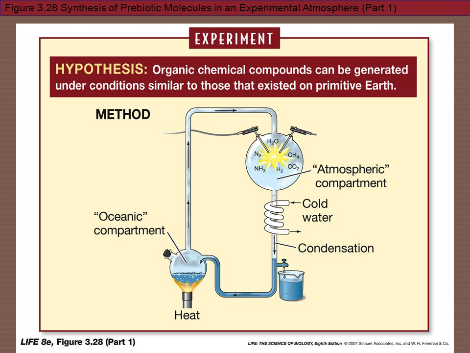 Figure 3.28 Synthesis of Prebiotic Molecules in an Experimental Atmosphere (Part 1)