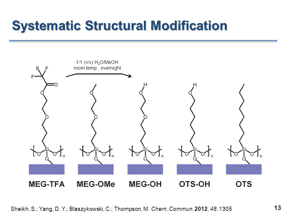 Systematic Structural Modification Sheikh, S.; Yang, D.