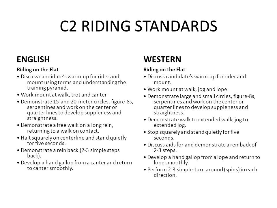 C2 RIDING STANDARDS ENGLISH Riding on the Flat Discuss candidate's warm-up for rider and mount using terms and understanding the training pyramid.