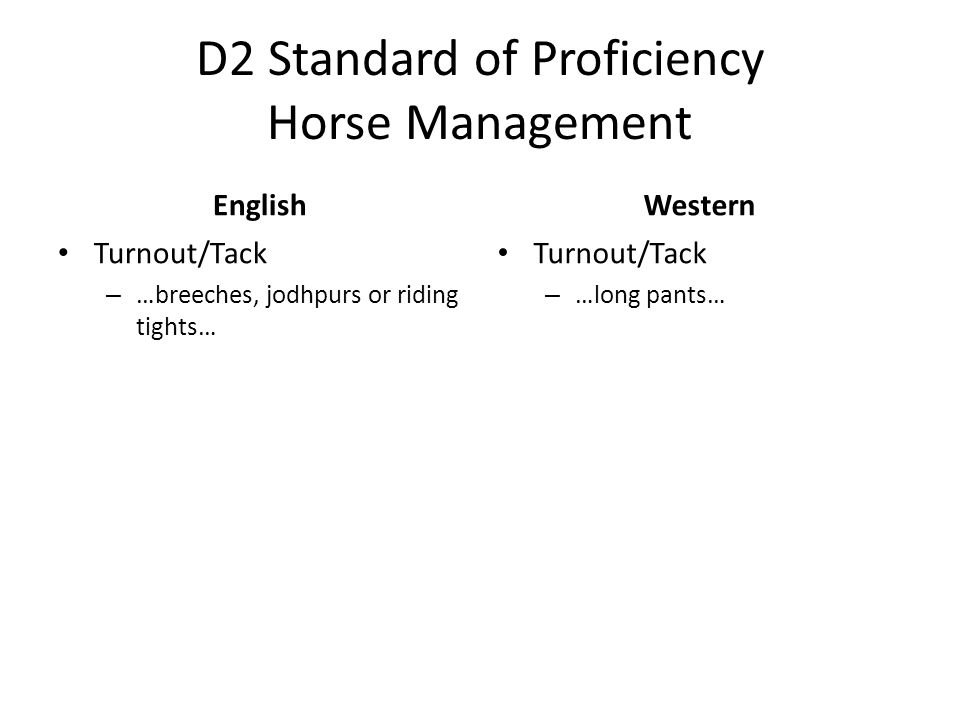D2 Standard of Proficiency Horse Management English Turnout/Tack – …breeches, jodhpurs or riding tights… Western Turnout/Tack – …long pants…