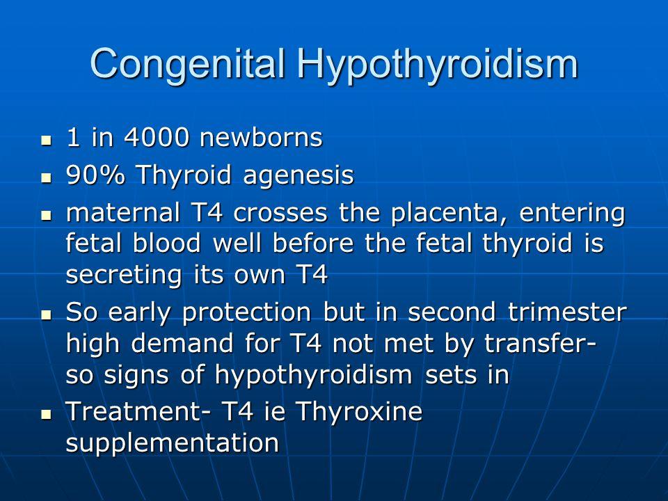 Congenital Hypothyroidism 1 in 4000 newborns 1 in 4000 newborns 90% Thyroid agenesis 90% Thyroid agenesis maternal T4 crosses the placenta, entering f