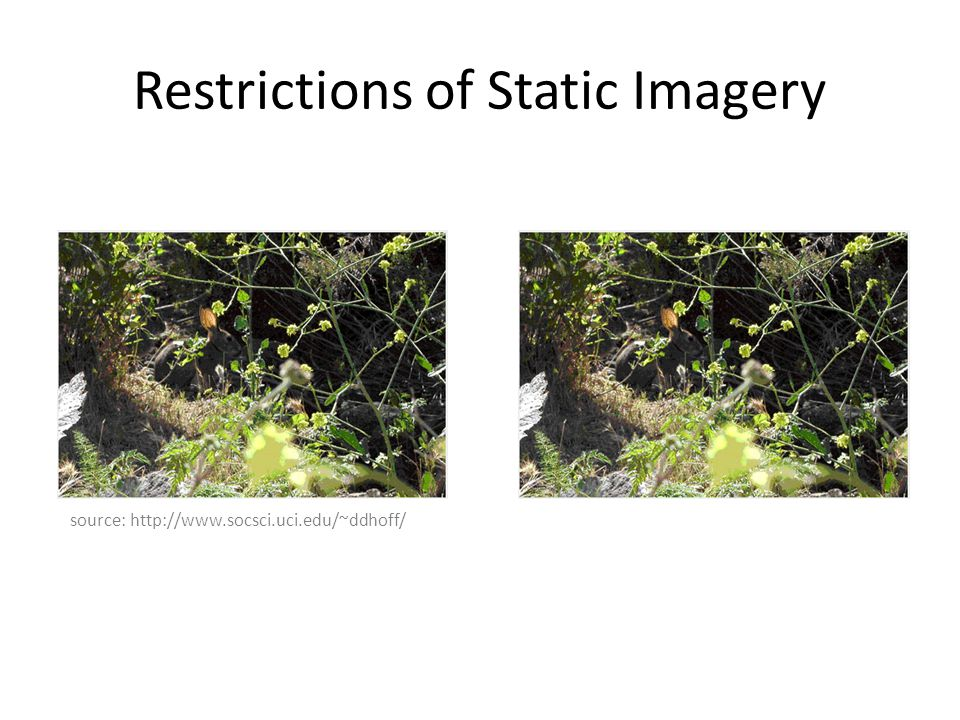 Restrictions of Static Imagery source: http://www.socsci.uci.edu/~ddhoff/