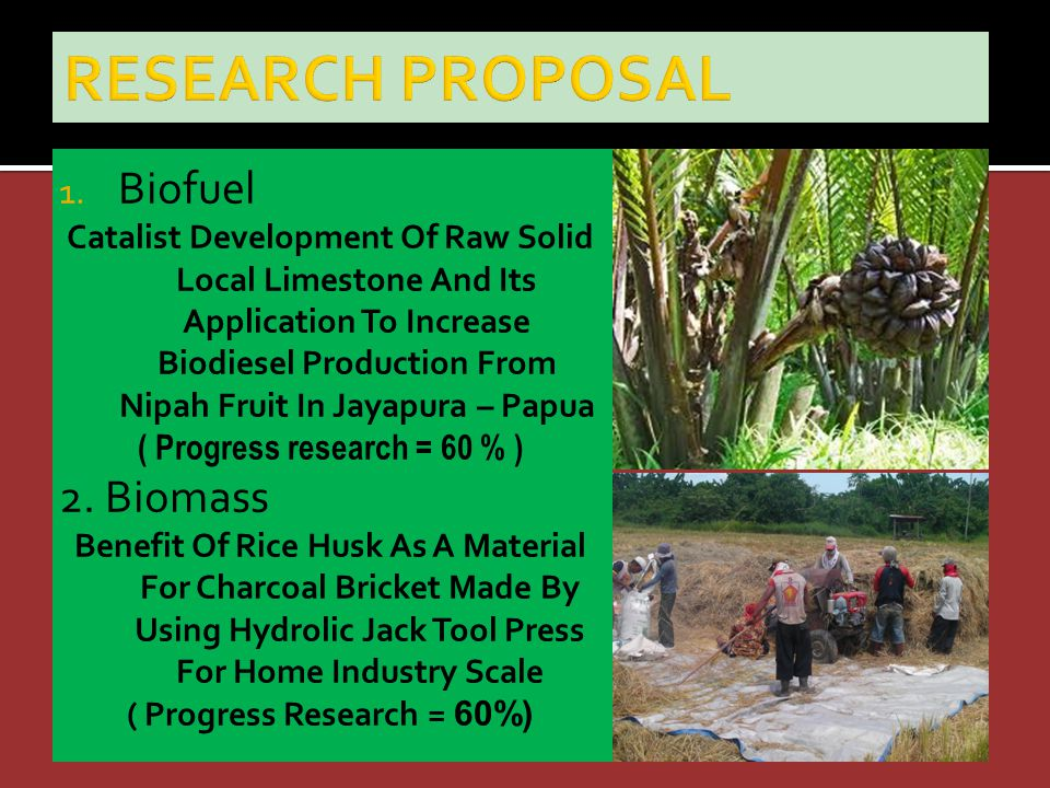 1. Biofuel Catalist Development Of Raw Solid Local Limestone And Its Application To Increase Biodiesel Production From Nipah Fruit In Jayapura – Papua