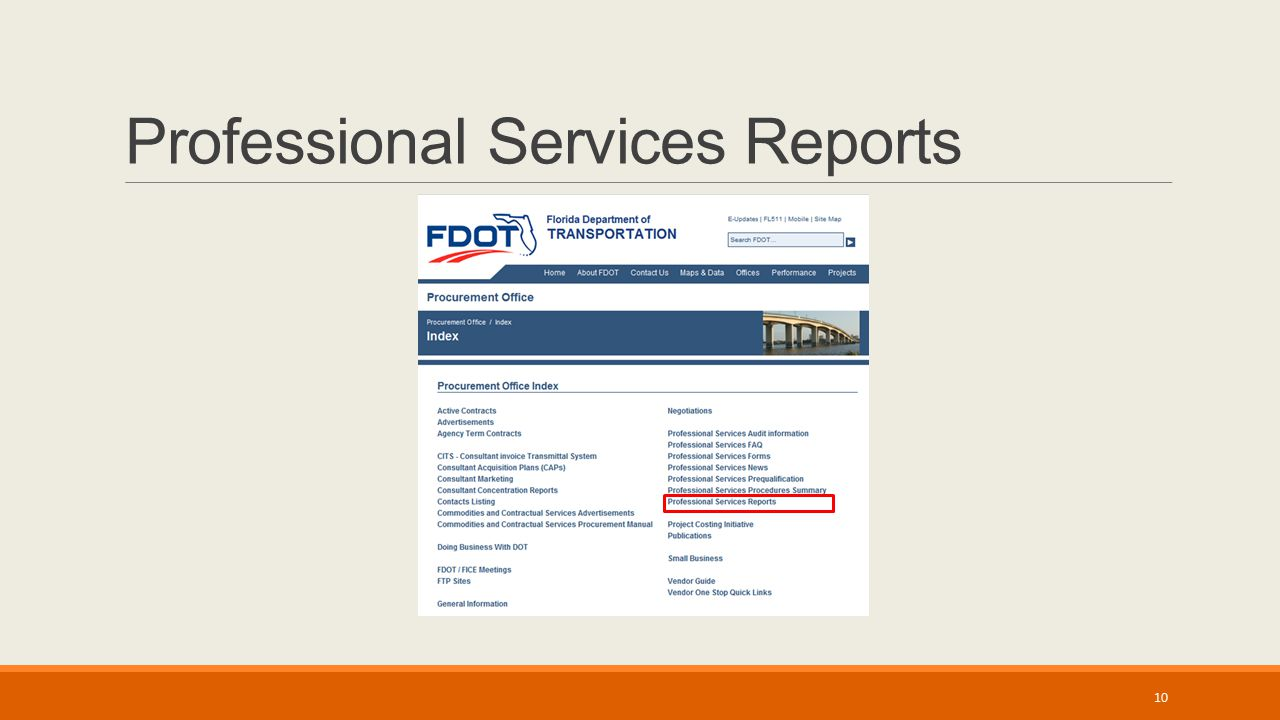Professional Services Reports 10