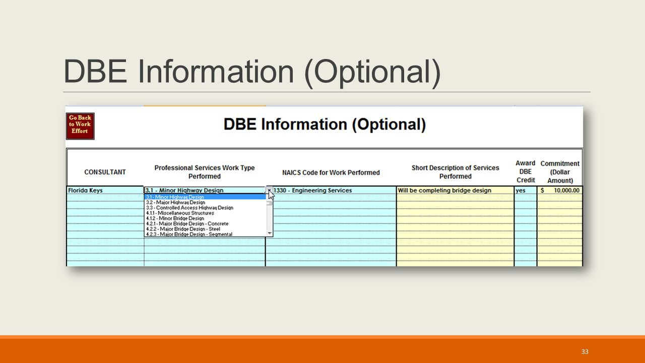 DBE Information (Optional) 33