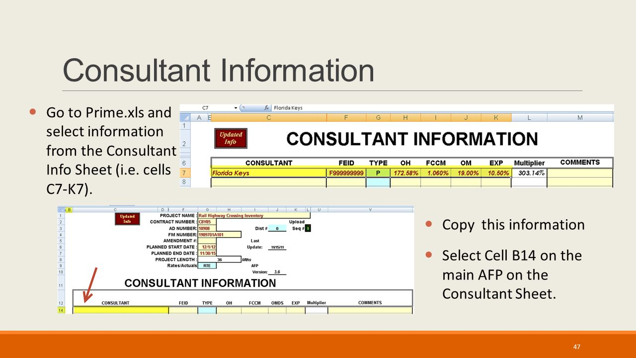 Consultant Information Go to Prime.xls and select information from the Consultant Info Sheet (i.e. cells C7-K7). Copy this information Select Cell B14