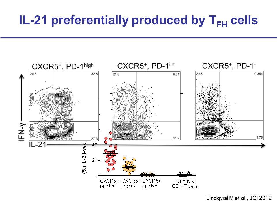 IL-21 preferentially produced by T FH cells Lindqvist M et al., JCI 2012