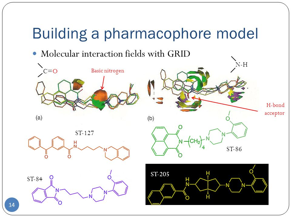 Building a pharmacophore model 14 Molecular interaction fields with GRID C=O N-H ST-127 ST-84 ST-205 ST-86 H-bond acceptor Basic nitrogen