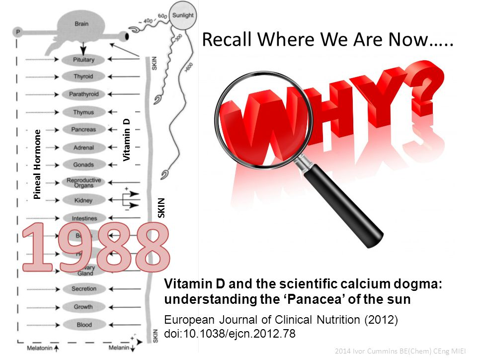 2014 Ivor Cummins BE(Chem) CEng MIEI Vitamin D and the scientific calcium dogma: understanding the 'Panacea' of the sun European Journal of Clinical Nutrition (2012) doi:10.1038/ejcn.2012.78 Recall Where We Are Now…..
