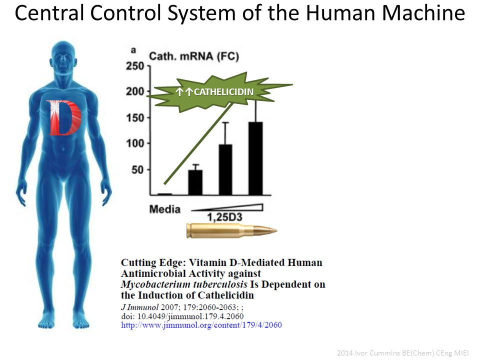 Central Control System of the Human Machine 2014 Ivor Cummins BE(Chem) CEng MIEI ↑↑CATHELICIDIN