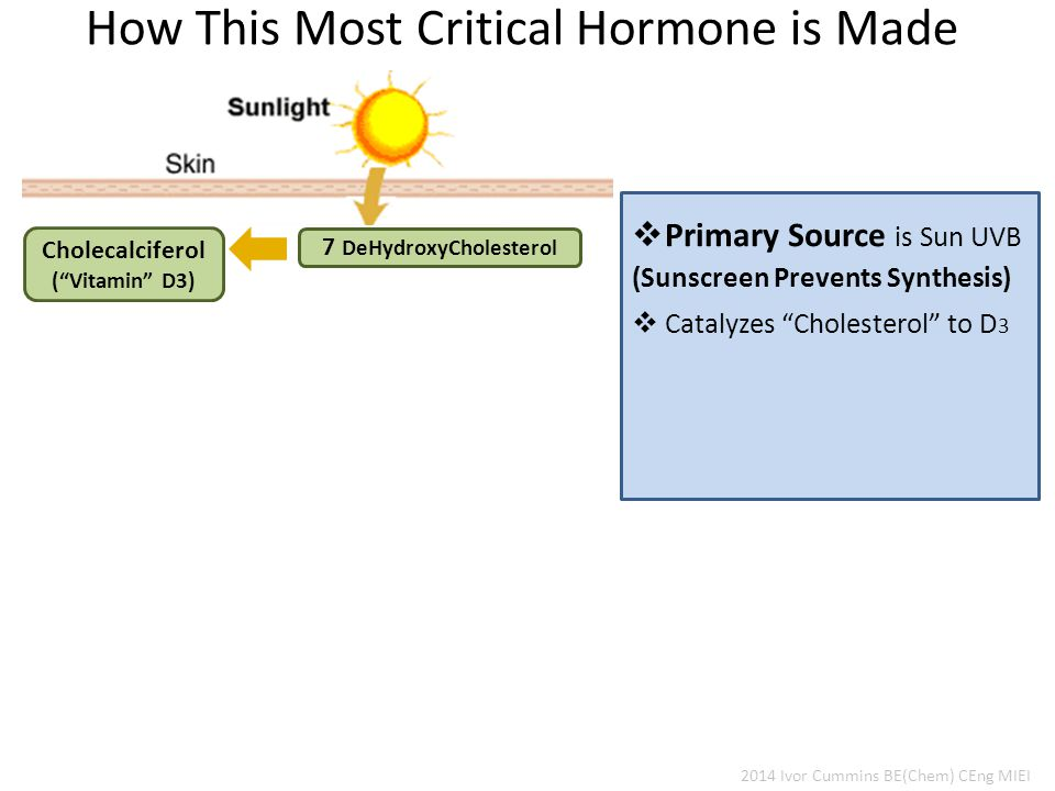2014 Ivor Cummins BE(Chem) CEng MIEI How This Most Critical Hormone is Made 7 DeHydroxyCholesterol Cholecalciferol ( Vitamin D3)  Primary Source is Sun UVB  Catalyzes Cholesterol to D 3 (Sunscreen Prevents Synthesis)