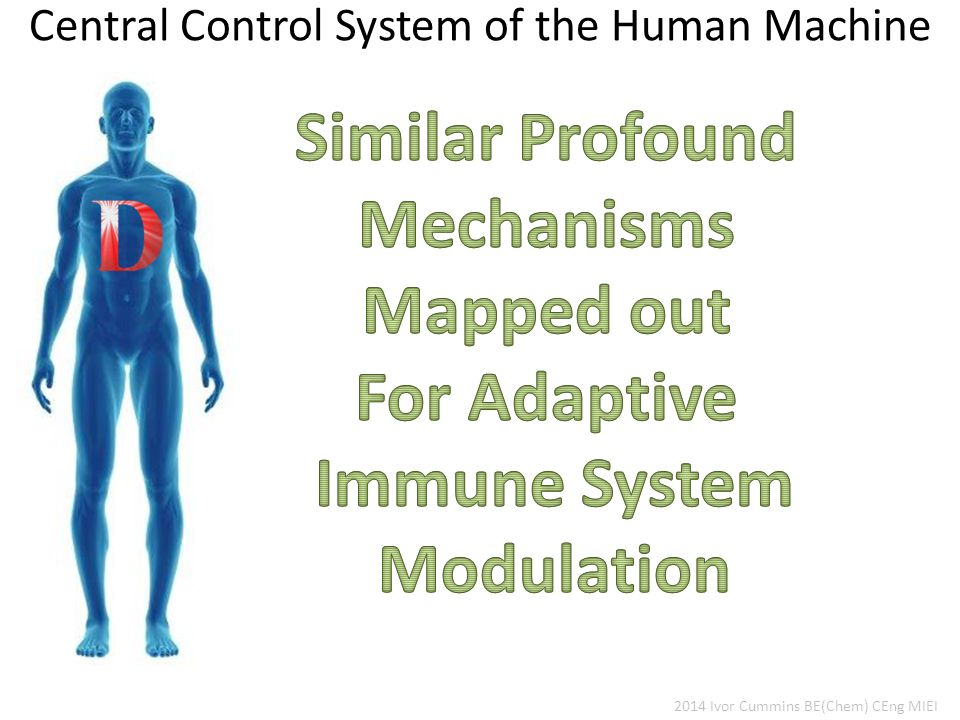 Central Control System of the Human Machine 2014 Ivor Cummins BE(Chem) CEng MIEI