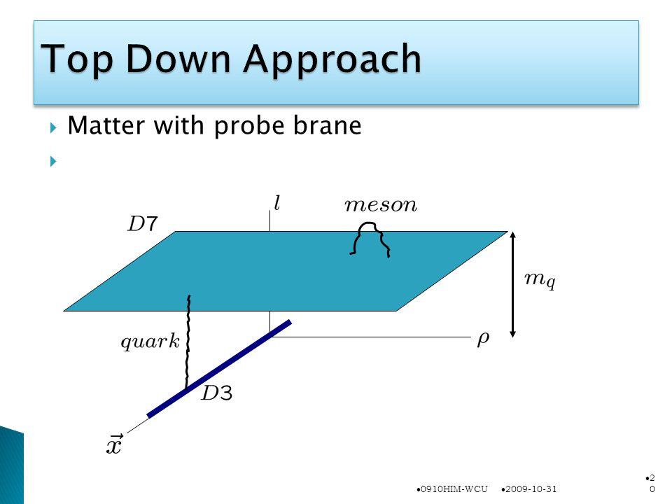  Matter with probe brane  2009-10-31 0910HIM-WCU 2020
