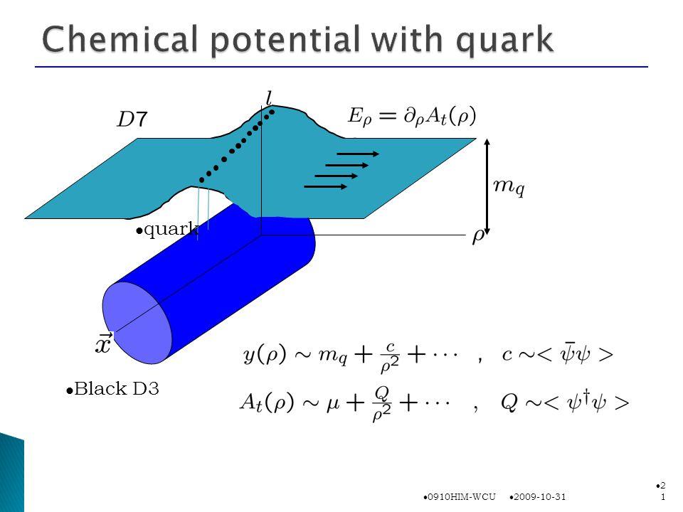 2009-10-31 0910HIM-WCU 2121 Black D3 quark