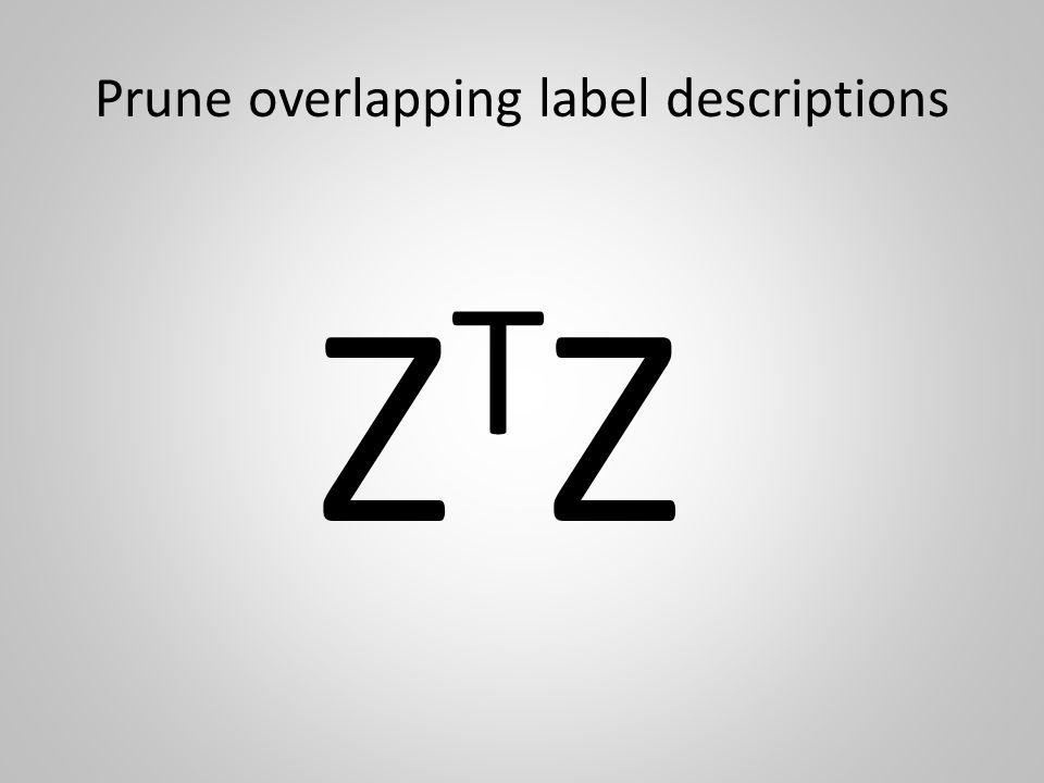 Prune overlapping label descriptions ZTZZTZ