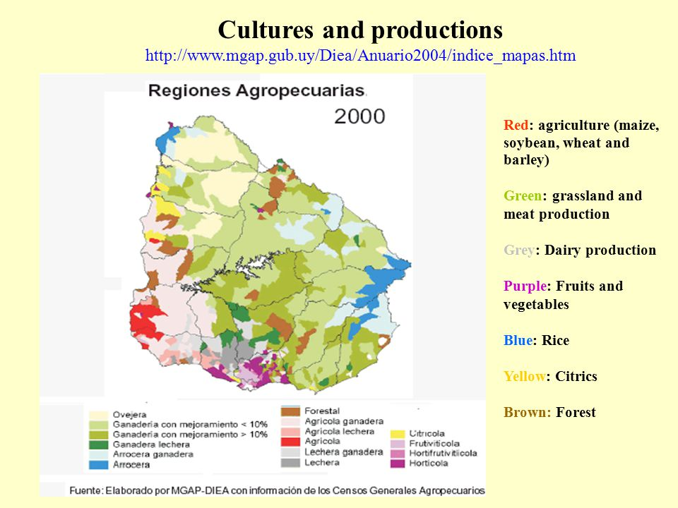 Cultures and productions http://www.mgap.gub.uy/Diea/Anuario2004/indice_mapas.htm Red: agriculture (maize, soybean, wheat and barley) Green: grassland