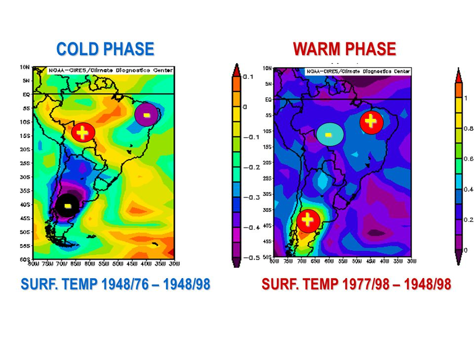SURF. TEMP 1948/76 – 1948/98 SURF. TEMP 1977/98 – 1948/98 + + - - COLD PHASE WARM PHASE +-