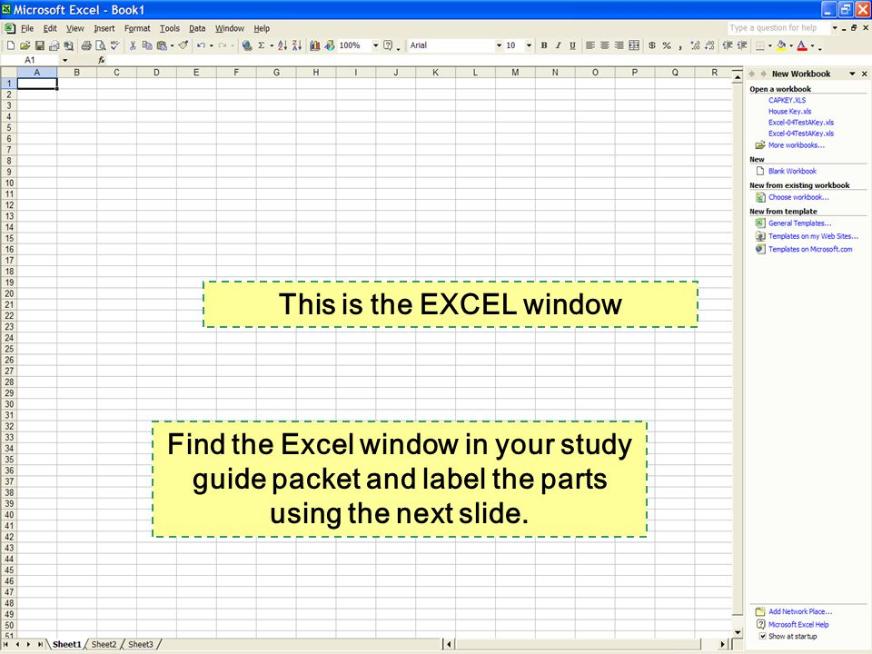 This is the EXCEL window Find the Excel window in your study guide packet and label the parts using the next slide.