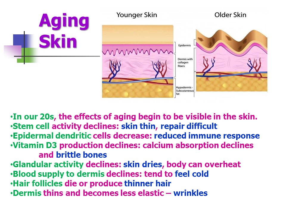 Aging Skin In our 20s, the effects of aging begin to be visible in the skin.