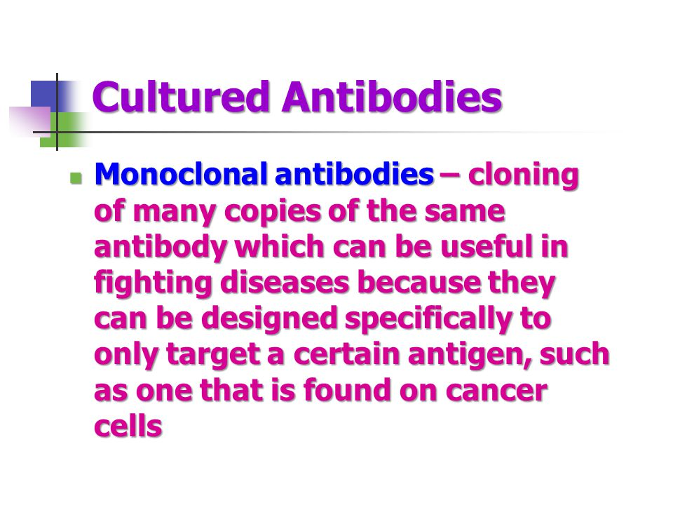 Cultured Antibodies Monoclonal antibodies – cloning of many copies of the same antibody which can be useful in fighting diseases because they can be designed specifically to only target a certain antigen, such as one that is found on cancer cells Monoclonal antibodies – cloning of many copies of the same antibody which can be useful in fighting diseases because they can be designed specifically to only target a certain antigen, such as one that is found on cancer cells