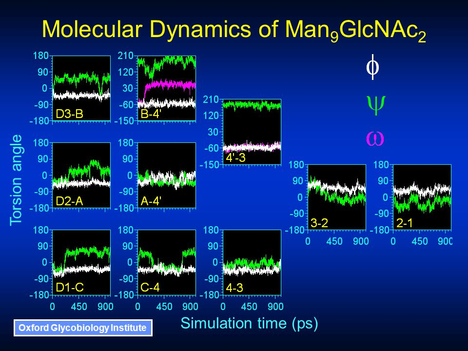 Oxford Glycobiology Institute Simulation time (ps) Torsion angle Molecular Dynamics of Man 9 GlcNAc 2