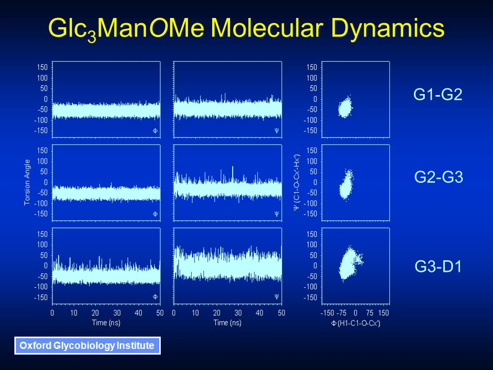 Oxford Glycobiology Institute Glc 3 ManOMe Molecular Dynamics G1-G2 G2-G3 G3-D1