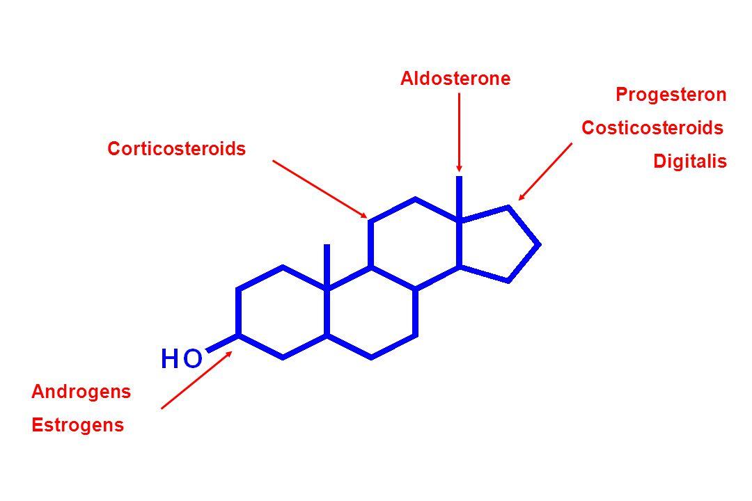 Corticosteroids Androgens Estrogens Aldosterone Progesteron Costicosteroids Digitalis