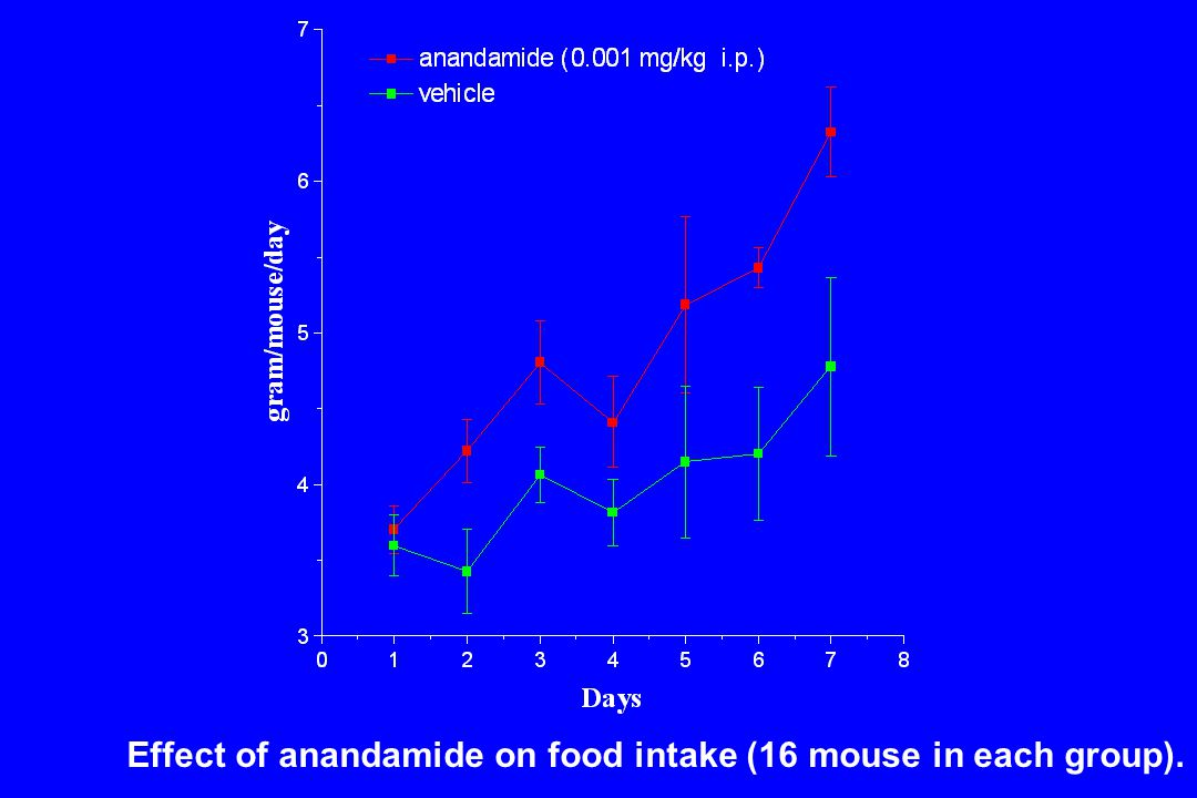 Effect of anandamide on food intake (16 mouse in each group).